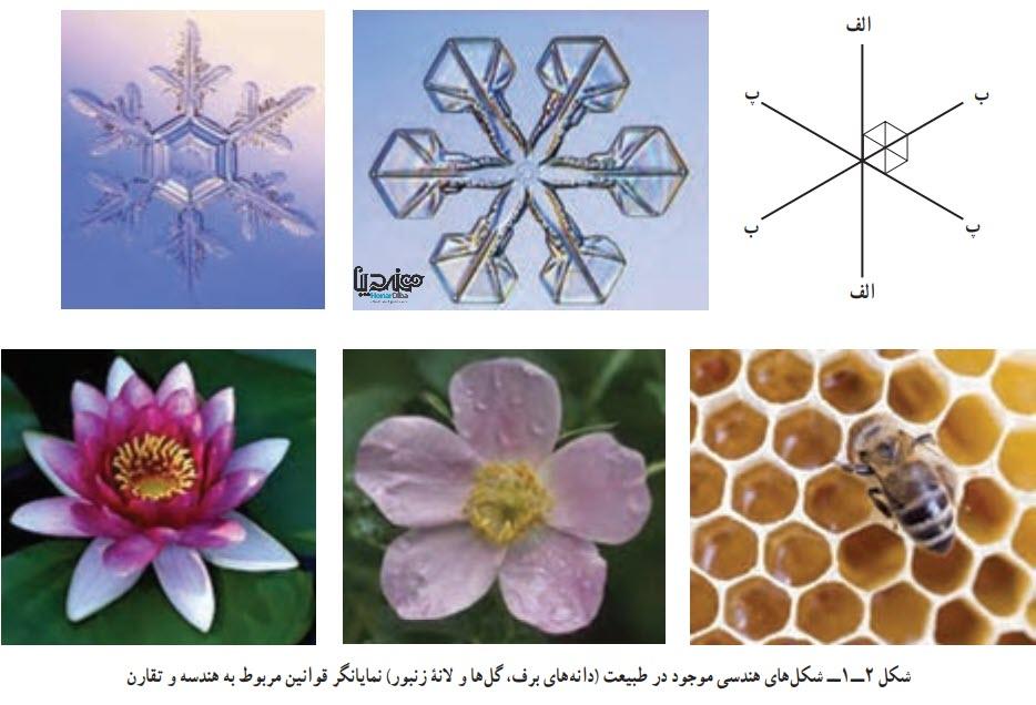 شکلهای هندسی موجود در طبیعت (دانههای برف، گلها و لانۀ زنبور) نمایانگر قوانین مربوط به هندسه و تقارن